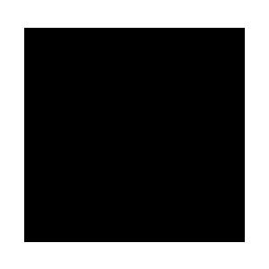 Irans Standard Logo
